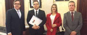 Diretoria da OAB Guarulhos Protocola na Corregedoria do Tribunal de Justiça de São Paulo Representação em face da Juíza Márcia Blanes