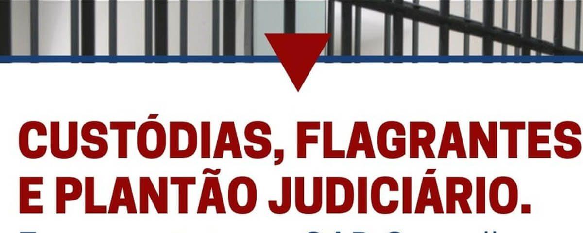 Custódias, flagrantes e plantão judiciário