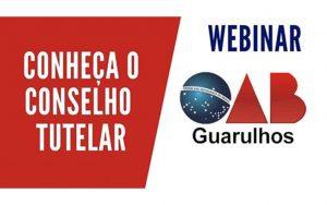 """Read more about the article Transmissão da Webinar: """"Conheça o Conselho Tutelar"""""""