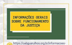 Informações Gerais sobre o Funcionamento da Justiça